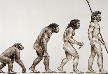 Theorists Solve An Old Biological Mystery - The Evolution Of Cooperation