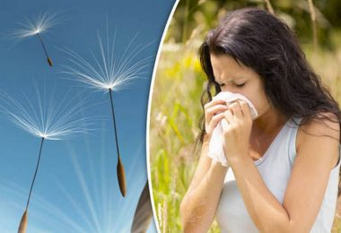 Easy Ways To Reduce Allergic Reactions During Hay Fever Season